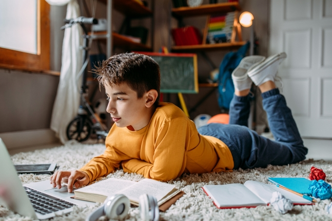 Online Learning Option Still Available for Families - Florida Virtual School Flex - copy